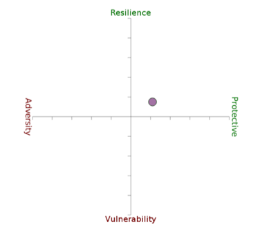 Resilience Matrix